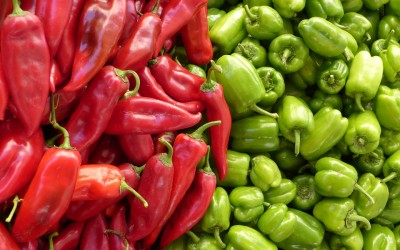 Metabolomic analysis of the effects of a commercial complex biostimulant on pepper crops